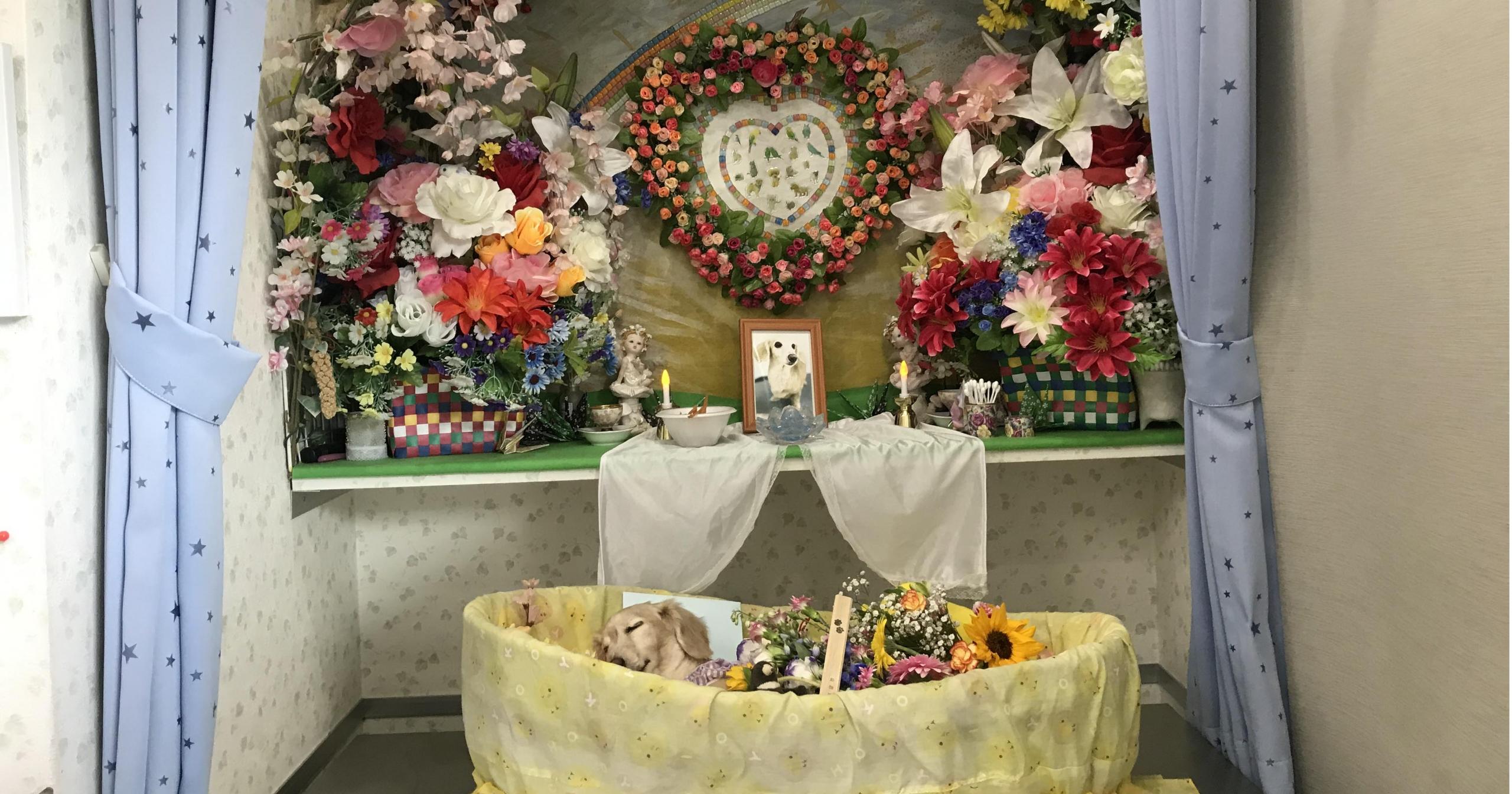 愛犬火葬|埼玉県川口市「ペットセレモニー」は口コミ評判通り良かった(感想) | 保護犬の飼い方ブログ